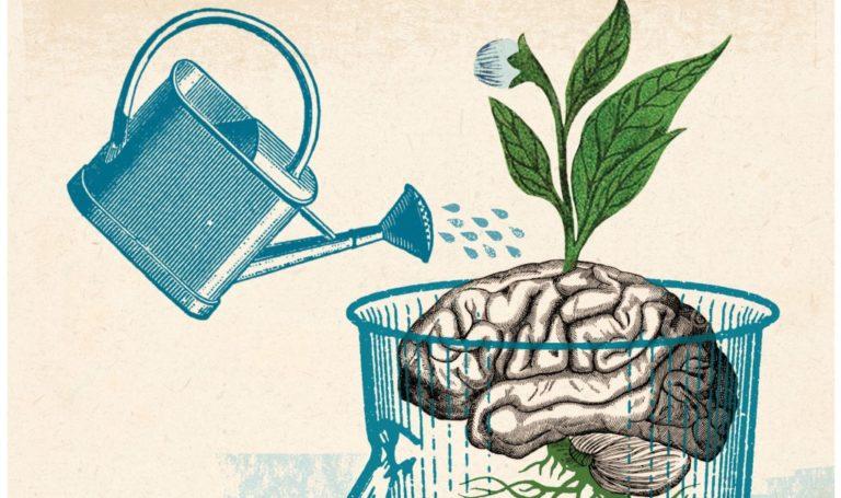 Meditação e divagação mental